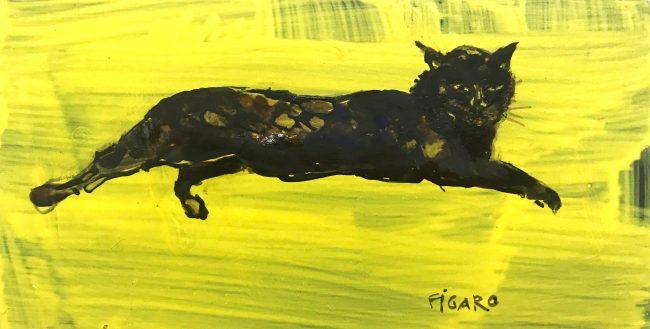corona diary-Figaro