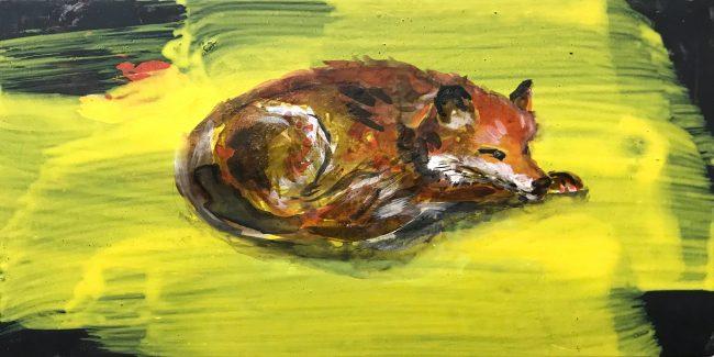 corona diary-fox