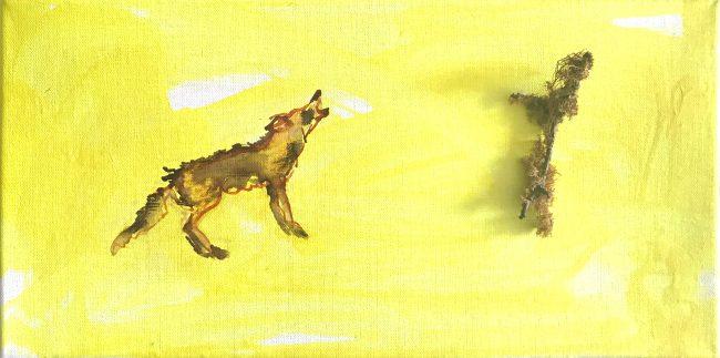 Kojotengeschichten 1