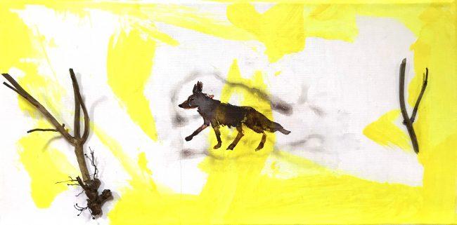 Kojotengeschichten 5