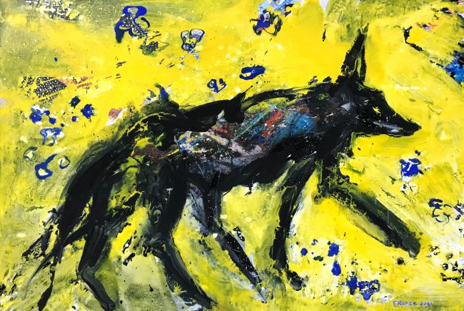 coyote-completely drunk (veilchenblau)